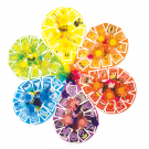 Flower Wheel Kit