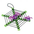 Spider Web with Spiders Craft Kit
