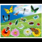 Realistic Bugs & Flowers Sticker Scene